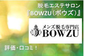 BOWZU(ボウズ)腹毛脱毛費用口コミ